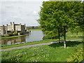 TQ8353 : Moat east of Leeds Castle by Paul Gillett