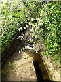 TM4089 : Stream after passing under Barsham Old Bridge by Adrian Cable