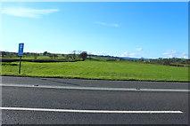 NX7865 : Farmland near Mollance by Billy McCrorie