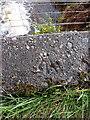 NN2681 : OS rivet & benchmark, Roybridge, Achadh na Croise by Richard Law