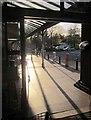 SX8966 : Supermarket exit, the Willows by Derek Harper