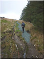 SD7688 : Repaired bridleway above Cowgill by Karl and Ali