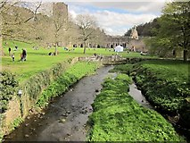 SE2768 : River Skell at Fountains Abbey by Derek Harper