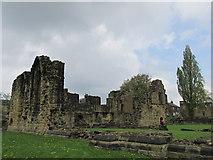 SE3706 : Monk Bretton priory. by steven ruffles
