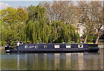 TQ2681 : Jessie at Little Venice by The Carlisle Kid