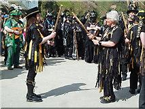 SW9980 : Morris dancers - Port Isaac by Chris Allen