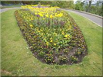 TQ1873 : Flower bed by Pembroke Lodge by David Howard