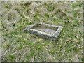 SE0808 : Stone grouse grit tray by Humphrey Bolton