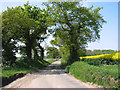 TG3726 : This way to the B1159 road by Evelyn Simak