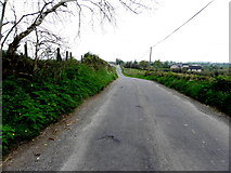 H7580 : Killycurragh Road by Kenneth  Allen