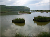 TV5197 : Saline lagoon at Cuckmere Haven by Andrew Diack
