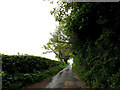 TM4091 : Dunburgh Road on Dunburgh Hill by Geographer