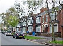 TA0831 : Beresford Avenue, Kingston upon Hull by Bernard Sharp