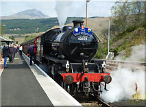 NN3825 : Great Britain VII at Crianlarich by Mary and Angus Hogg