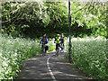 TQ3670 : Waterlink Way at Lower Sydenham by Stephen Craven