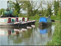 SP0272 : Worcester & Birmingham Canal - passing Alvechurch Marina by Chris Allen