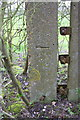 SU6297 : Benchmark on concrete post in hedge by Roger Templeman