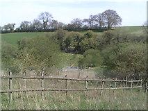 SP9504 : White Hawridge Bottom by Peter S