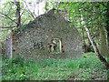 TG0836 : Ruin in Heath House Wood by Evelyn Simak