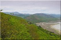 SH6216 : Llethrau gogleddol y Foryd Mawddach / Northern slopes of the Mawddach Estuary by Ian Medcalf