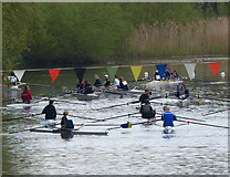 SK5803 : Rowers on the Grand Union Canal by Mat Fascione