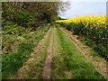 TL0895 : Bridleway heading towards Sibson by Michael Trolove