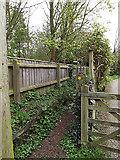 TM3569 : Lovers Lane Footpath near Lane House by Geographer