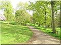 NZ3429 : Path in Hardwick Park by David Hawgood