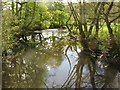 SE2700 : The River Don at Huthwaite by Dave Pickersgill