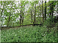SE7971 : Site of Roman wall by Pauline E
