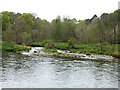 NT5235 : Confluence of the Allan Water with the River Tweed by Oliver Dixon