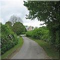 TL3044 : Abington Pigotts: Church Lane in May by John Sutton