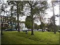 TQ2990 : Green by Alexandra Park Road by David Howard