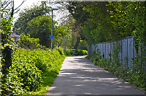 SO8453 : Worcester : Footpath by Lewis Clarke