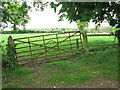 TG3109 : Gate into pasture by St Margaret's church by Evelyn Simak