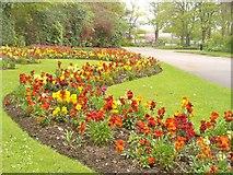 NJ9304 : Aberdeen - Duthie Park by Colin Smith