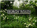 TM4594 : Burgh Road sign by Adrian Cable