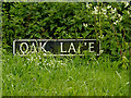 TM4794 : Oaks Lane sign by Adrian Cable