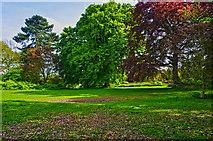 SP2865 : Warwick : Priory Park by Lewis Clarke
