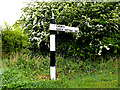 TM4993 : Roadsign on Church Lane by Adrian Cable
