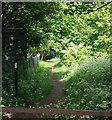 TQ4178 : Gilbert's Pit, Maryon Park, Charlton SE7 by David Hallam-Jones