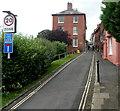 SO5174 : Upper Linney, Ludlow by Jaggery