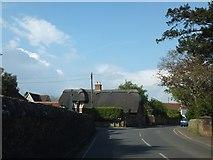 SU7507 : Thatch in Westbourne by David Smith