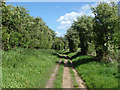 TQ0348 : Footpath to Guildford Lane by Alan Hunt