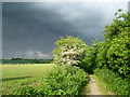 TQ6469 : Storm clouds over the Wealdway by Marathon