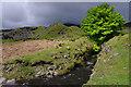 SD2795 : Banishead Quarry by Ian Taylor