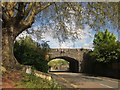 SX9064 : Railway Bridge, Chelston by Derek Harper