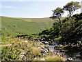 SX6462 : The Erme Valley by Tony Atkin