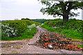 SO8855 : Wychavon : Small Lane by Lewis Clarke