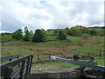 SD9321 : Fields above [east of] Nip Square Lock, Walsden by Christine Johnstone